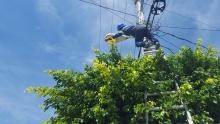 """<a href=""""/noticias/atiende-gobierno-del-estado-infraestructura-electrica-de-morelos"""">Atiende Gobierno del Estado infraestructura eléctrica de Morelos</a>"""